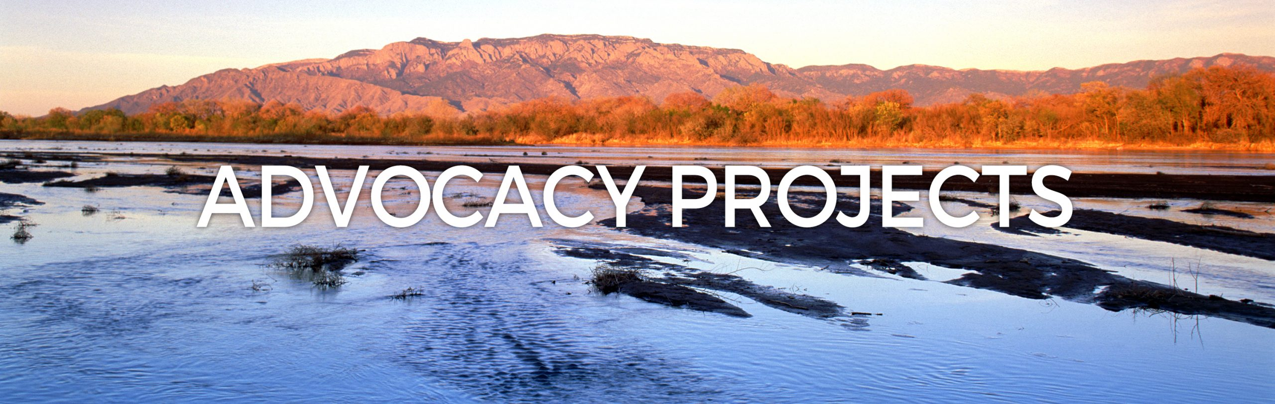 Advocacy Projects header